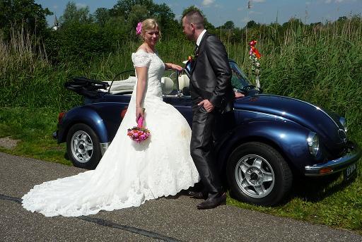 bruidspaar-blauwe-kever